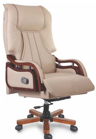 CEO Chair manufacturers in Noida